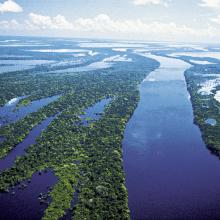 Rio Negro © Roberto Linsker